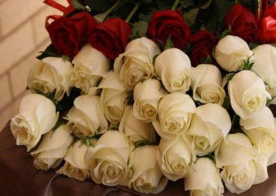 10.-Roses